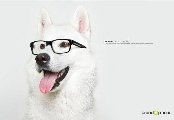 propagandas-criativas-com-animais13