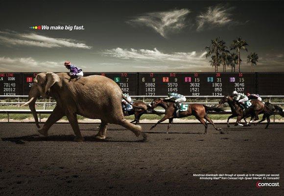propagandas-criativas-com-animais4