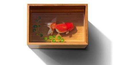 Keng Lye e suas pinturas 3d feitas em pratos e vasilhas (3)