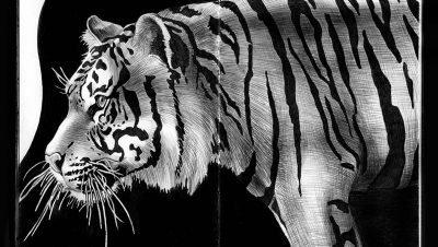 Ilustrações e desenhos realistas com caneta preta feitos por Tim Jeffs (4)