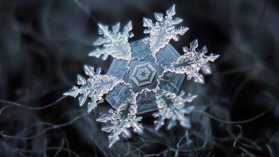 Imagens incriveis capturadas por Alexey Kljatov, flocos de neve em fotografias macro (7)