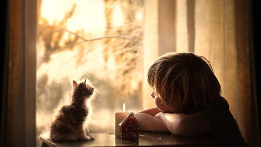 Fotografias inspiradoras com crianças e animais (9)