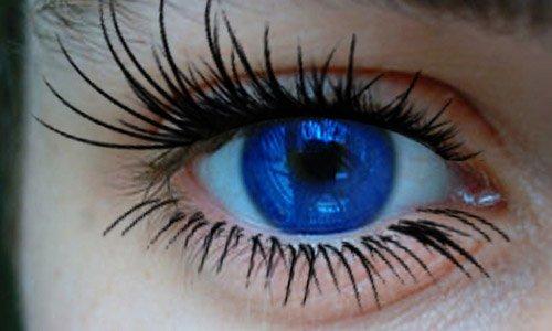 Brushes de olhos, cílios e relacionados para você baixar (10)