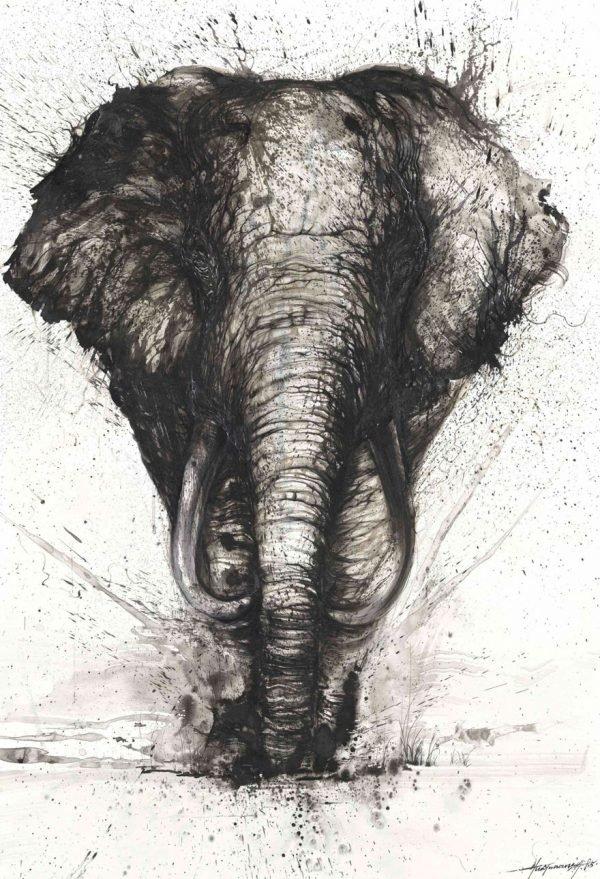 Pinturas urbanas feitas de animais (2)