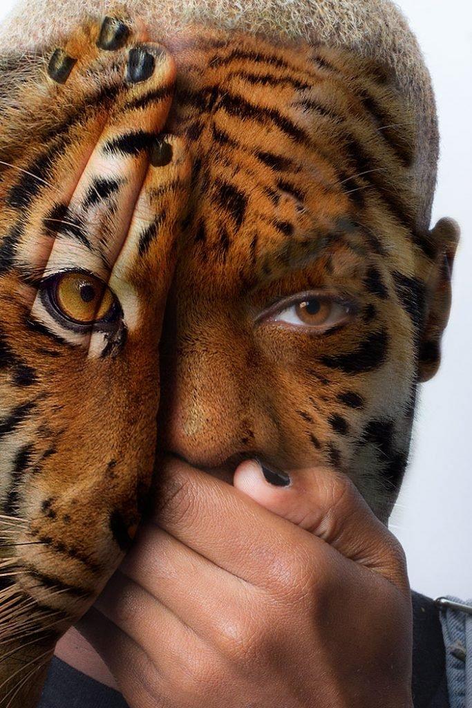 Série fotográfica contra zoológicos (6)