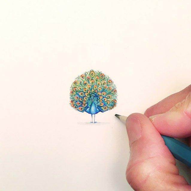 Desenhos e pinturas pequenas e criativas (8)