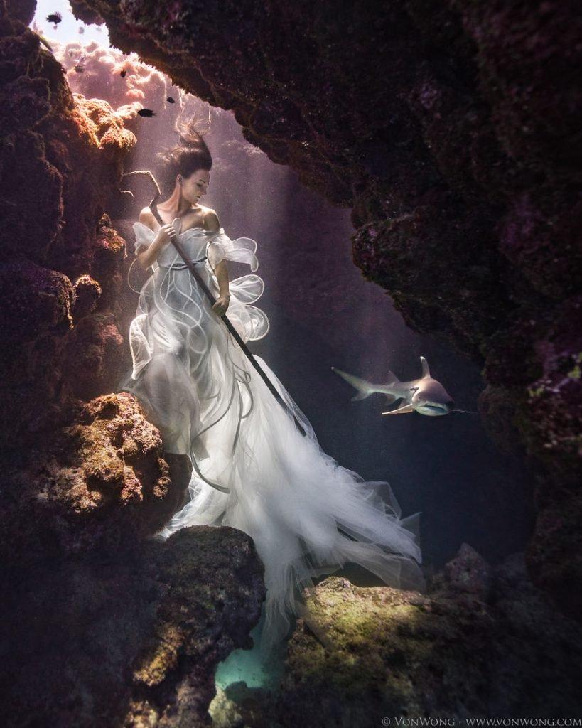 Fotografias debaixo da água em prol dos tubarões (5)