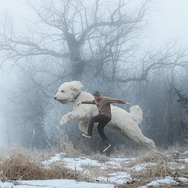 Fotógrafo e seu cachorro em fotos criativas (8)