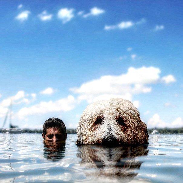 Fotógrafo e seu cachorro em fotos criativas (15)