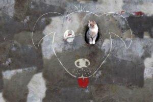 Arte urbana minima mas com uma criatividade colossal (1)