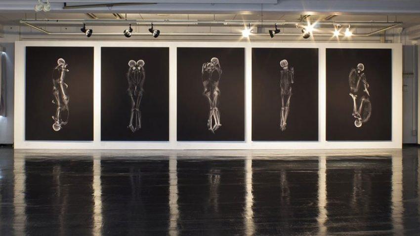 Ayako Kanda e Mayuka Hayashi criam para seu trabalho de conclusão de curso um show de imagens de casais em momentos de afeto só que em raio-x (1)