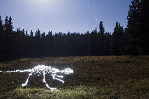 lighting painting criativos de dinossauro (10)